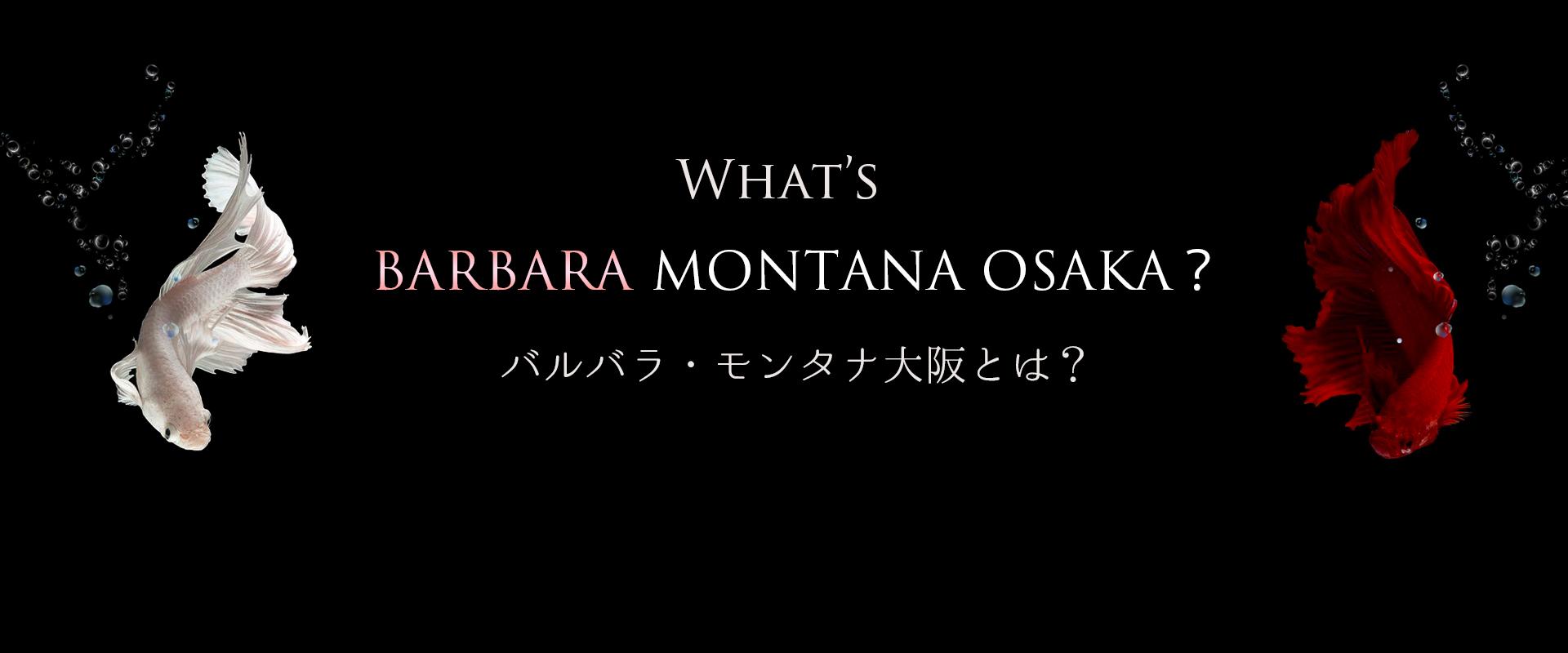 What's CHARLES MONTANA?